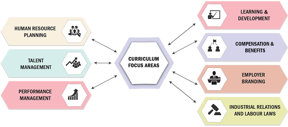 Curriculum Focus Areas